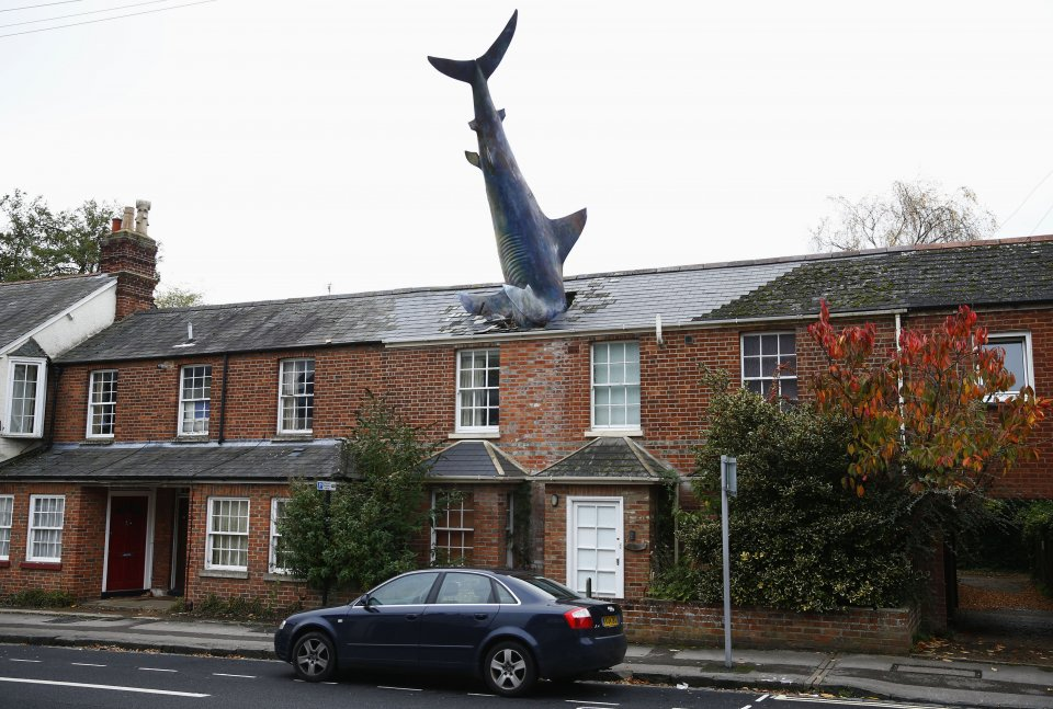 shark house, property, wealth
